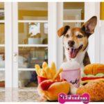 Gioco Hot dog
